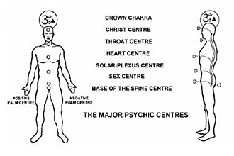 The locations of the chakras or psychic centres